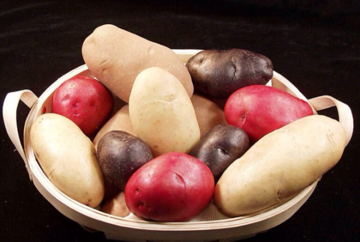 tu dou_ppctin土豆聊天软件  第1张