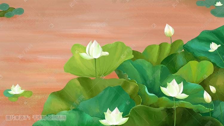 白莲花是什么意思_圣母婊和白莲花是什么意思  第2张