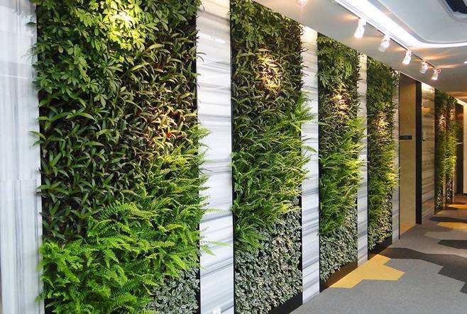 植物墙报价_人造植物墙效果_人造植物墙