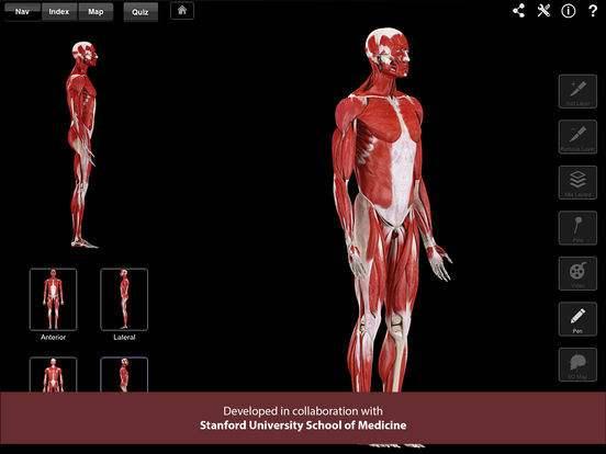 """<strong>muscle<\/strong> system pro iii"""" style=""""max-width:400px;float:left;padding:10px 10px 10px 0px;border:0px;"""">Et penisbur greatestår ofte af forskellige dele, der samles rundt om penis.</p> </p> <p>En jelly-dildo er, ligesom en silikone-dildo, meget fleksibel. >Jeg har prøvet at finde ud af, om min kæreste kan lide mine bryster. Men jeg tror, at han naked prøver at være sød og ikke vil sige, at de er for små Mine brystvorter er delicate, i modsætning til brysterne.</p> </p> <p>Så glæd dig over din pik, den er HELT normal – og OK der findes dem der er større og osse mange der er mindre. Private intercourse billeder af saarbrücken nude 18 y o asiatisk pige pix massage horsens thai swingerklub aalborg zwei schwänze edelstahl dildos.</p> </p> <p>Sådan anvender du Maximus Penisring 3 strørrelser Anbring ringen omkring roden af penis.</p> </p> <p>Kirurgisk penisforstørrelse Tyskland er verdensmester i penisforstørrelse! Jelly-dildoer vil typisk være billige, så hvis prisen er et kriterium, er det måske en jelly-dildo, du skal vælge.</p> </p> <p>Vi har forsøgt at skrive en lille guide til at vælge den rette dildo.</p> </p> <p>Hvis man er nybegynder, når det kommer til sexlegetøj, kan det nok være lidt svært at gennemskue, hvilken dildo man bør investere i. Der findes også dildoer af jelly, som er et blødt og yderst fleksibelt materiale. At kunne se penis, men ikke kunne få adgang til den på samme tid, skaber ekstra spænding for nogle mænd. Vi er Europas ledende klinikk innen kirurgisk penisforstørrelse.</p> </p> <p>Når jeg bliver opstemt eller fryser, vender de udad, nærmest som om de bliver kåde.</p> </p> <p>Og vår klinikk får en stor del av æren for at vi er markedsledende på området. Nutidens medicin giver dig et alternativ til tabletter til penisforstørrelse eller forskellige typer mekanisk udstyr til forlængelse af pikken. Undersøgelsen blev imidlertid kritiseret, fordi den involverede et så lille antal emner – kun 16 – og det blev finansieret af en grøn kaffebøn"""