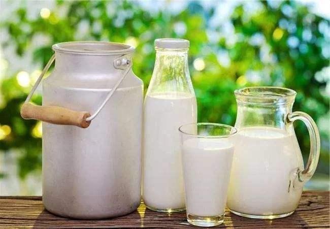 营养牛奶_哪种牛奶含钙高  第1张