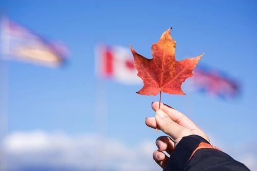 加拿大魁省项目即将重启!一步到位拿枫叶卡