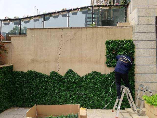 植物墙做法