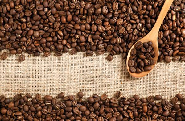 best organic coffee reviews 2020