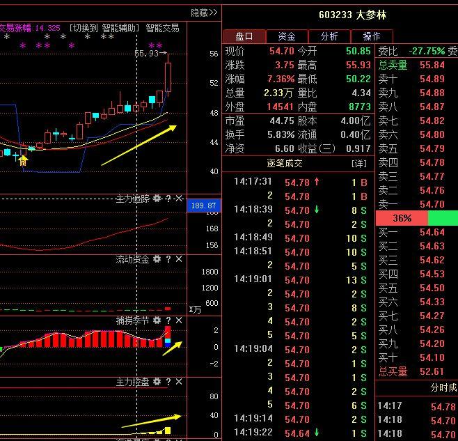 大参林上市股票代码(大参林上市股价)