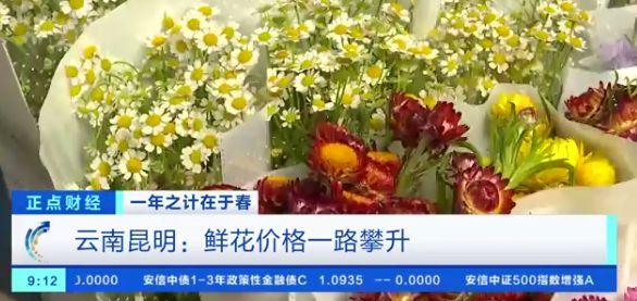 鲜花涨价近4倍现在价格是多少?鲜花为什么涨得这么厉害?